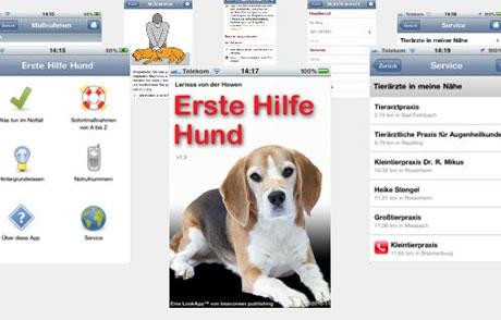 Erste Hilfe Hund-App verschenken und Straßenhunde retten