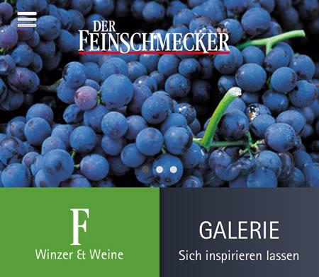Winzer & Weine Deutschland – DER FEINSCHMECKER Guide 2013