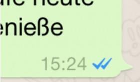 WhatsApp macht den blauen Hacken dran
