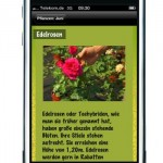 """Osteraktion Gartenratgeber """"Mein Garten"""" 50 Prozent günstiger"""