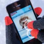 Handschuhe für Smartphones und Pads - Spontex touch