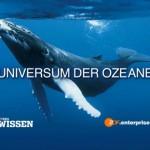 """""""Universum der Ozeane"""" - iPad-App von ZDF Enterprises und Zeitschrift HÖRZU WISSEN"""
